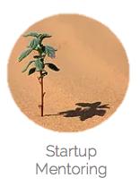 startup mentoring 2