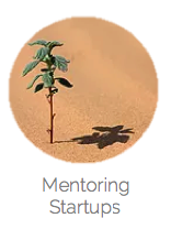 startup mentoring 3 – copie